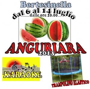 anguriara2013